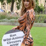 Wildtiere im Zirkus müssen verboten werden: Im heißen Tigermuster-Bodypainting wirbt Model Joanna Krupa für die Peta Kampagne.