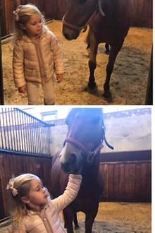 """21. September 2017  Prinzessin Madeleine macht mit ihren Kindern Prinzessin Leonore und Prinz Nicolas einen Ausflug. Gemeinsam besucht die Familie das Gotland Pony Heidi, das Leonore zur Taufe geschenkt bekommen hat. Die kleine Prinzessin bekam nach ihrer Geburt von König Carl Gustaf den Titel """"Herzogin von Gotland""""."""