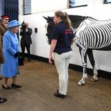 """24. Oktober 2017  Damit hat Queen Elizabeth nicht gerechnet: Statt eines normalen Pferdes, wird ihr beim Besuch des """"Household Cavalry Mounted Regiment"""" ein Tier mit aufgemaltemSkelett vorgeführt."""