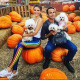 Maria Menounos und PartnerKeven Undergaro nehmen ihre Hunde mit zum Besuch auf dem Kürbisfeld.