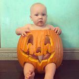 Mit diesem zuckersüßen Foto ihres Sohnes Jameson im Kürbis grüßt Sängerin Pink ihre Fans zu Halloween.