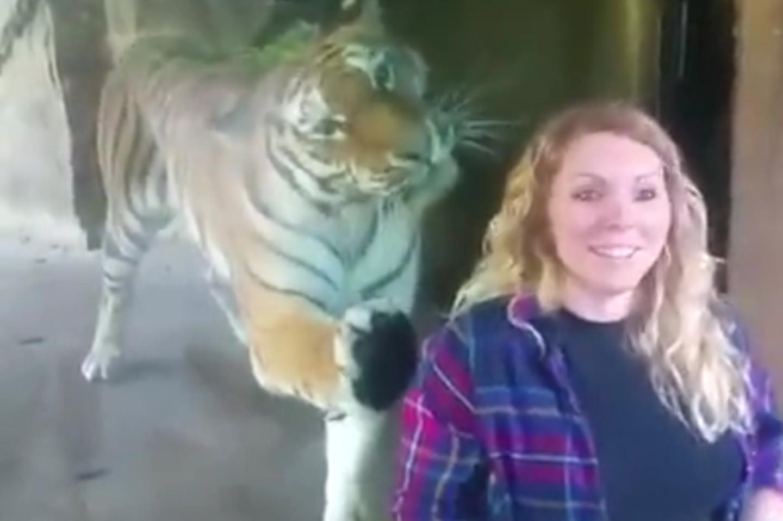Natascha vor dem Tigergehege