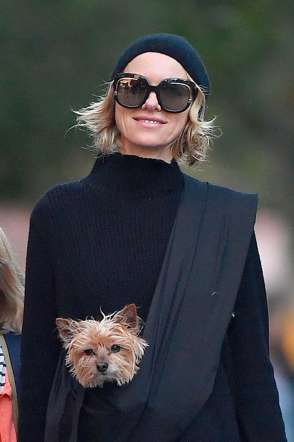 Was für ein Hundeleben: Naomi Watts trägt ihren kleinen Vierbeiner wie ein Känguru in einem Beutel vor der Brust.