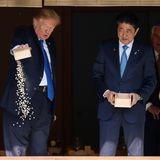 6. November 2017  An Koikarpfen kommt man in Japan wohl kaum vorbei: Donald Trump und Shinzo Abe werden beim Füttern der Luxuszierfische fotografiert.