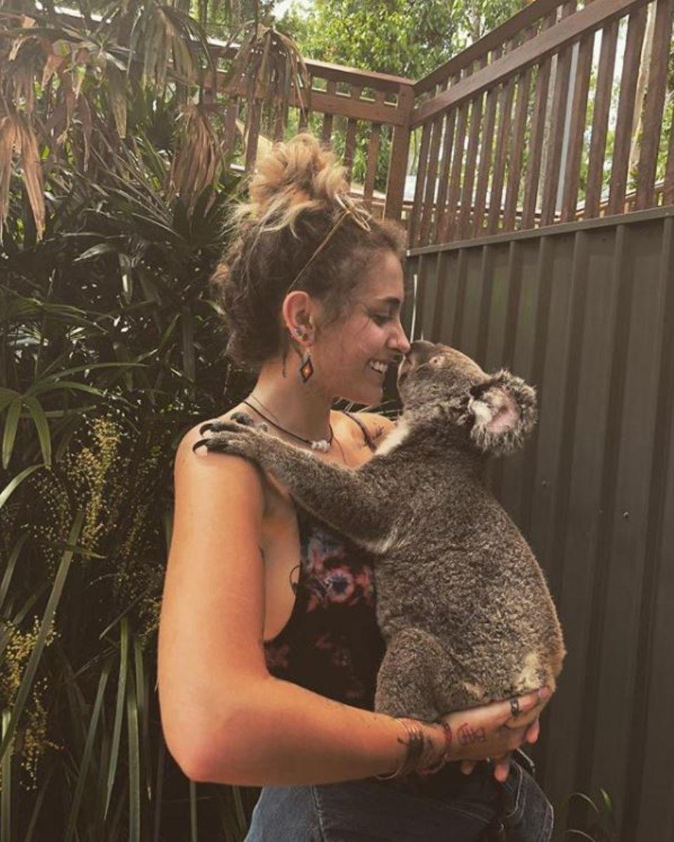 Ist das niedlich! Paris Jackson genießt eine Schmuserunde mit einem niedlichen Koala.