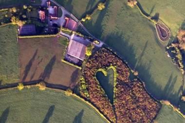 Versteckte Botschaft: Mann pflanzt 6000 Eichen - 17 Jahre später die große Überraschung