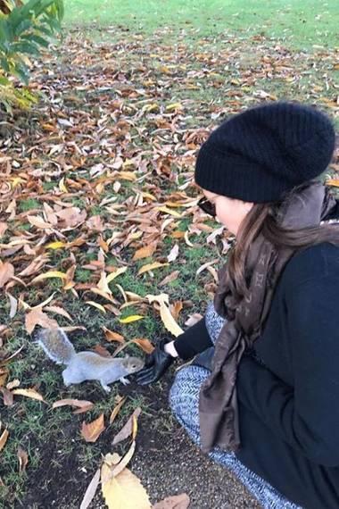 Achtung Bastian Schweinsteiger, Ana Ivanovic hat einen neuen Verehrer! Das niedliche Eichhörnchen scheint verdächtig zutraulich.