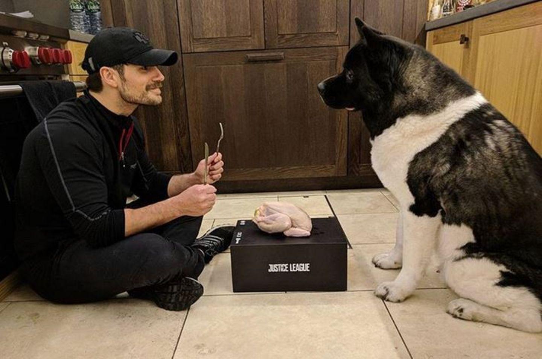 Vom Nicht-Amerikaner Henry Cavill gibt es für seinen amerikanischen Hund zum Erntedankfest einen kleinen Festschmaus.
