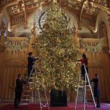 """23. November 2017  Mehr als sechs Meter hoch ist die Nordmanntanne, die in Windsor geschmückt wird. Queen Elizabeth klettert nicht selbst auf die Leiter, das übernehmen Bedienstete. Aber über die weihnachtliche Pracht in der """"St George's""""-Halle dürfte sie sich freuen."""