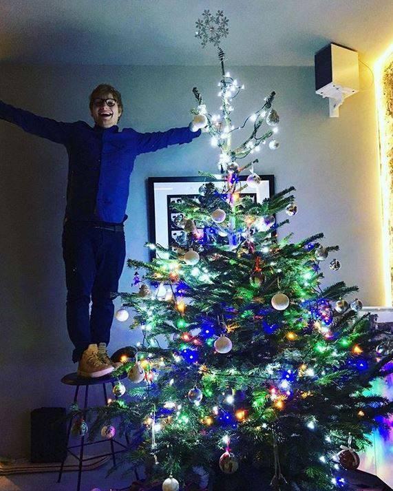 TADAA: Musiker Ed Sheeran präsentiert stolz seinen Weihnachtsbaum.