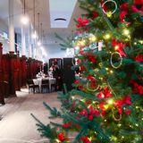 12. Dezember 2017  In Königin Sonjas Kunststall hat Weihnachten Einzug gehalten. Zu einem Empfang für Gäste von der Stadtmission, Heilsarmee und dem Blauen Kreuz wurde prachtvoll geschmückt.