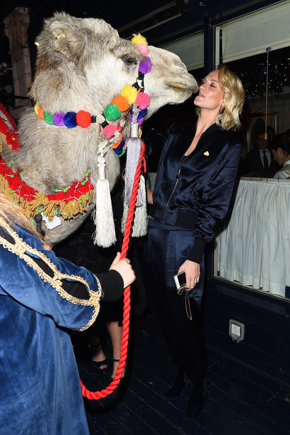 Während ihre Schwester Cara sich dem Löwen stellt, geht Poppy Delevingne eine Nummer sicher und knutscht ein Kamel.