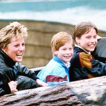 Prinzessin Diana, Prinz Harry, Prinz William