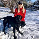 Devon Windsor macht einen Spaziergang im Schnee mit ihrem Hund Harley.