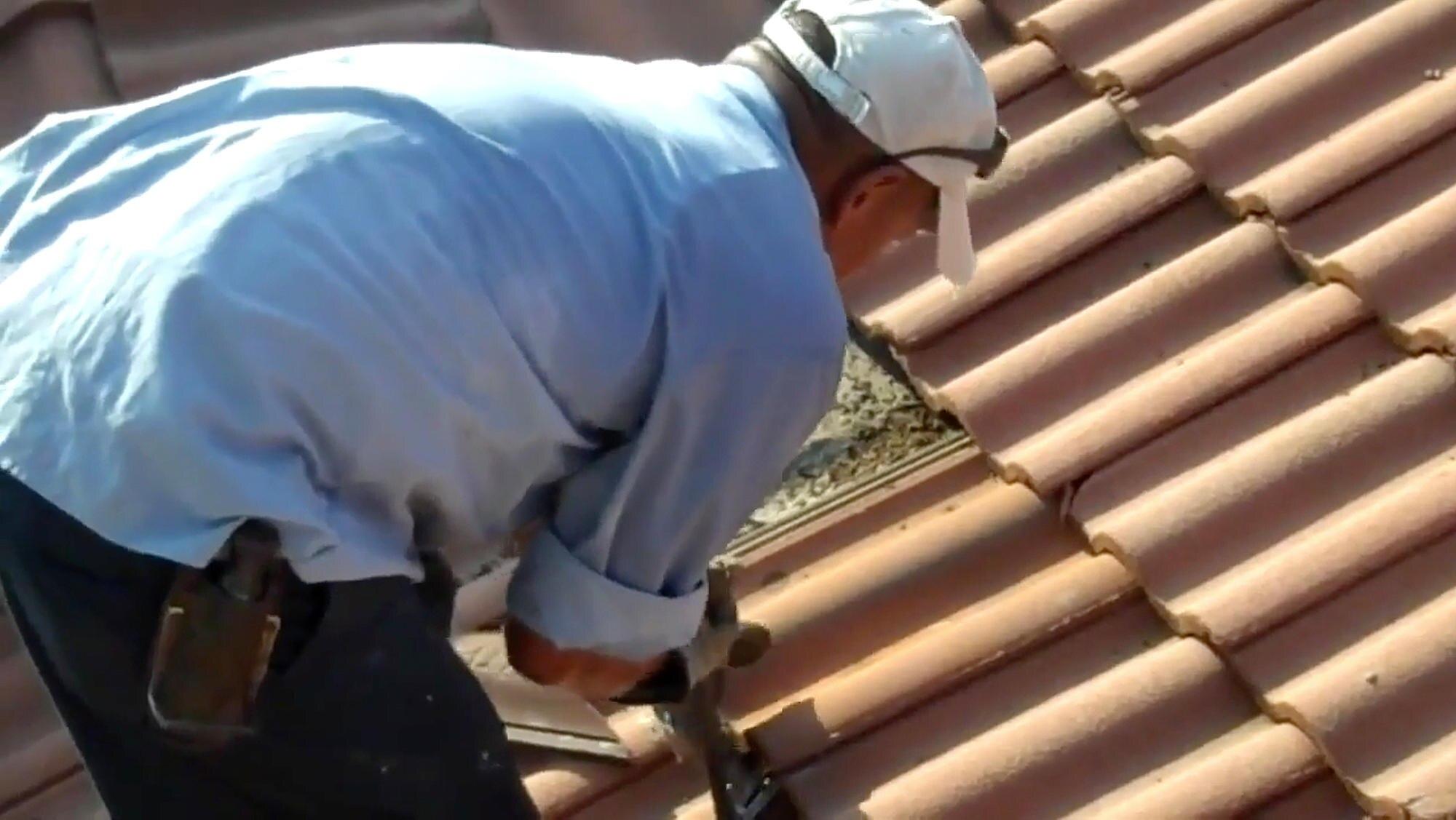 Unheimliches Renovieren Unter Diesen Dachziegeln Lauert Eine Fledermaus Uberraschung