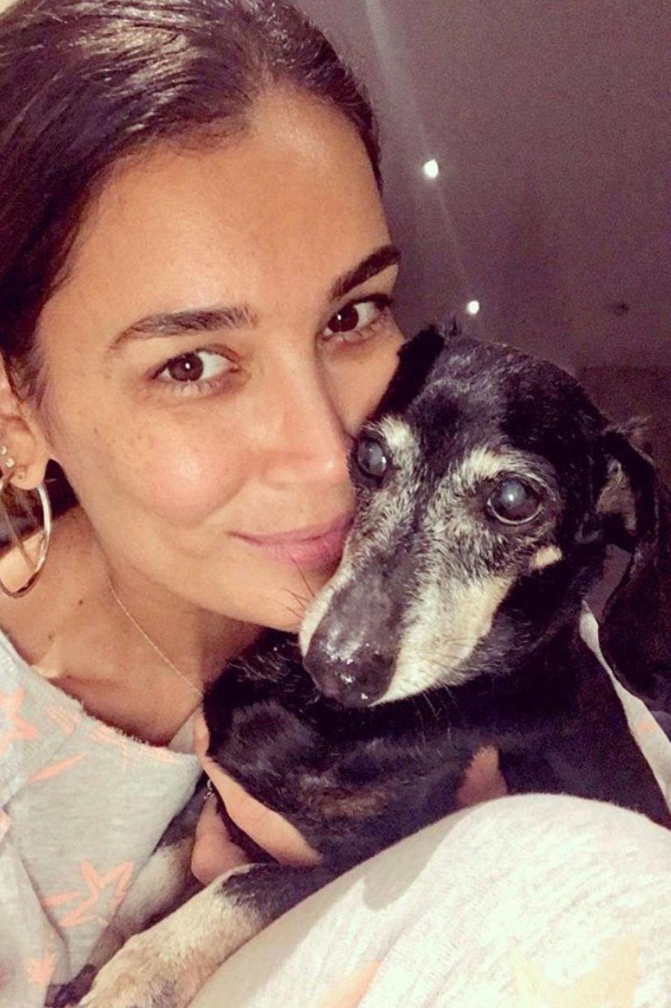 Die Moderatorin Jana Ina Zarrella postet sich mit ihrem Dackel Tyson, der in der Woche zuvor am Maul operiert wurde. Glücklicherweise hat er alles gut überstanden. Der kleine Vierbeiner ist mittlerweile schon fast 16 Jahre alt.