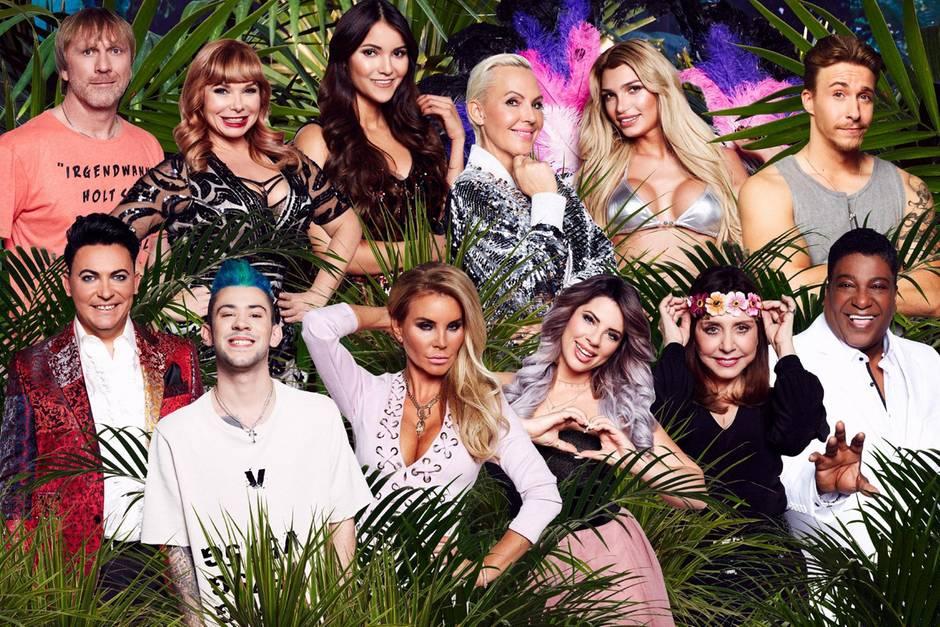 Dschungel Camp Dieses Stars Gehen Nach Australien Gala De