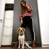 Zur Hose im sportlichen Jogger-Look kombiniert Annemarie Carpendale einen groben Strickpulli und bricht den legeren Look durch elegante Heels.