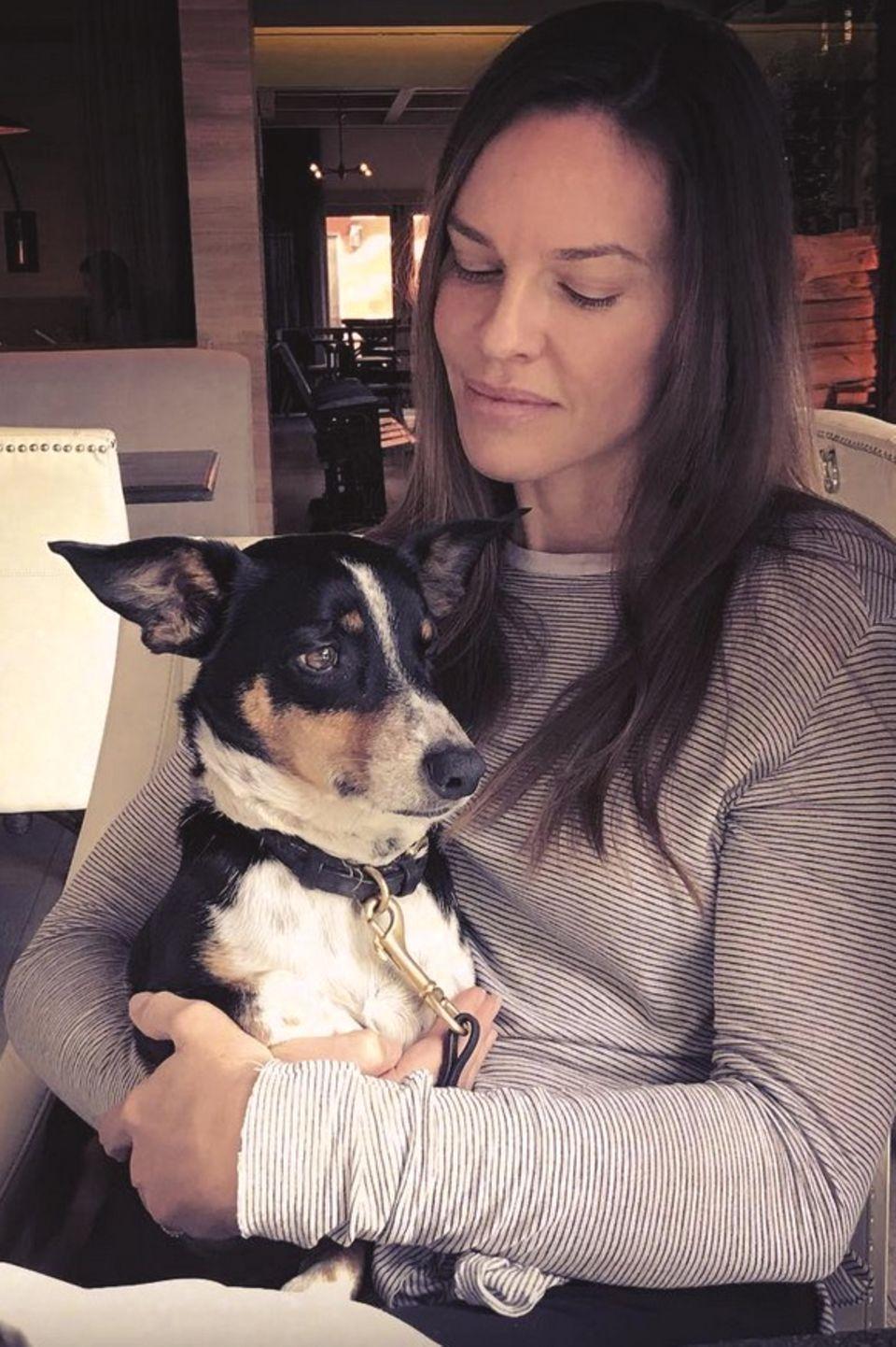 Einen fröhlichen Mittwoch wünscht Hilary Swank mit Hund Peanut im Arm.
