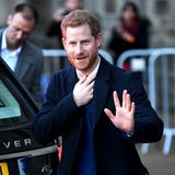 Prinz Harry ist älter und reifer geworden: Das sieht man dem ehemaligen Partyprinzen auch an. Doch das freche Grinsen aus seiner Jugend hat er sich erhalten. Sehen Sie selbst...