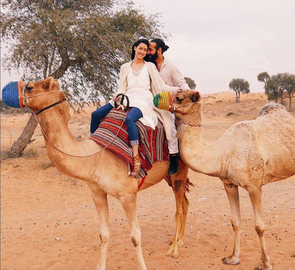 7. Februar 2018  Rebecca Mir und Massimo Sinató machen gerade Urlaub. Das Kamelpärchen sei genauso wie die beiden, postet Rebecca, immer zusammen. Wie romantisch!