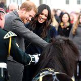 13. Februar 2018  Zu Besuch in Edinburgh: Vor demEdinburgh Castle werden Prinz Harry und Meghan Markle von dem Regiments-Pony Cruachan und Major Wilkinson begrüßt.