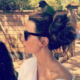 """Bei Kate Beckinsale piept's wohl: Auf ihrem Kopf hat es sich ein kleiner Vogel gemütlich gemacht. Vielleicht soll dieser ihr Glück bringen. Zumindest glaubt die hübsche Schauspielerin offensichtlich daran. """"... Manchmal hat man einfach Glück"""", postet sie. Glück wünschen wir ihr in jedem Fall."""
