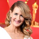 Mit Glamour-Locken à la Hollywood und frischem, dezentem Make-up bezaubert Laura Dern die Oscar-Fans.