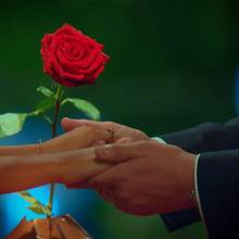Wem wird der Bachelor die letzte Rose überreichen - Kristina oder Svenja?