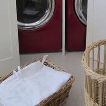 Tierquälerei: Diese Spanierin spülte ihre Katze in der Waschmaschine