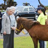 28. März 2018  Kaiserin Michiko und Kaiser Akihito beobachten einheimische Pferde auf einer Ranch auf der Insel Yonaguni im Süden Japans.