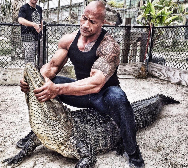 """The Rock promotet derzeit seinen neuen Film """"Rampage"""", der auf dem gleichnamigen Computerspiel von 1986 basiert. Der Film erzählt die Geschichte eines Mannes, der mit einem riesigen Gorilla zusammenarbeitet, um mutierte Wölfe und Reptilien zu bekämpfen. Der Schauspieler Dwayne Johnson will dies gleich mal an einem lebendigen Alligator ausprobieren."""