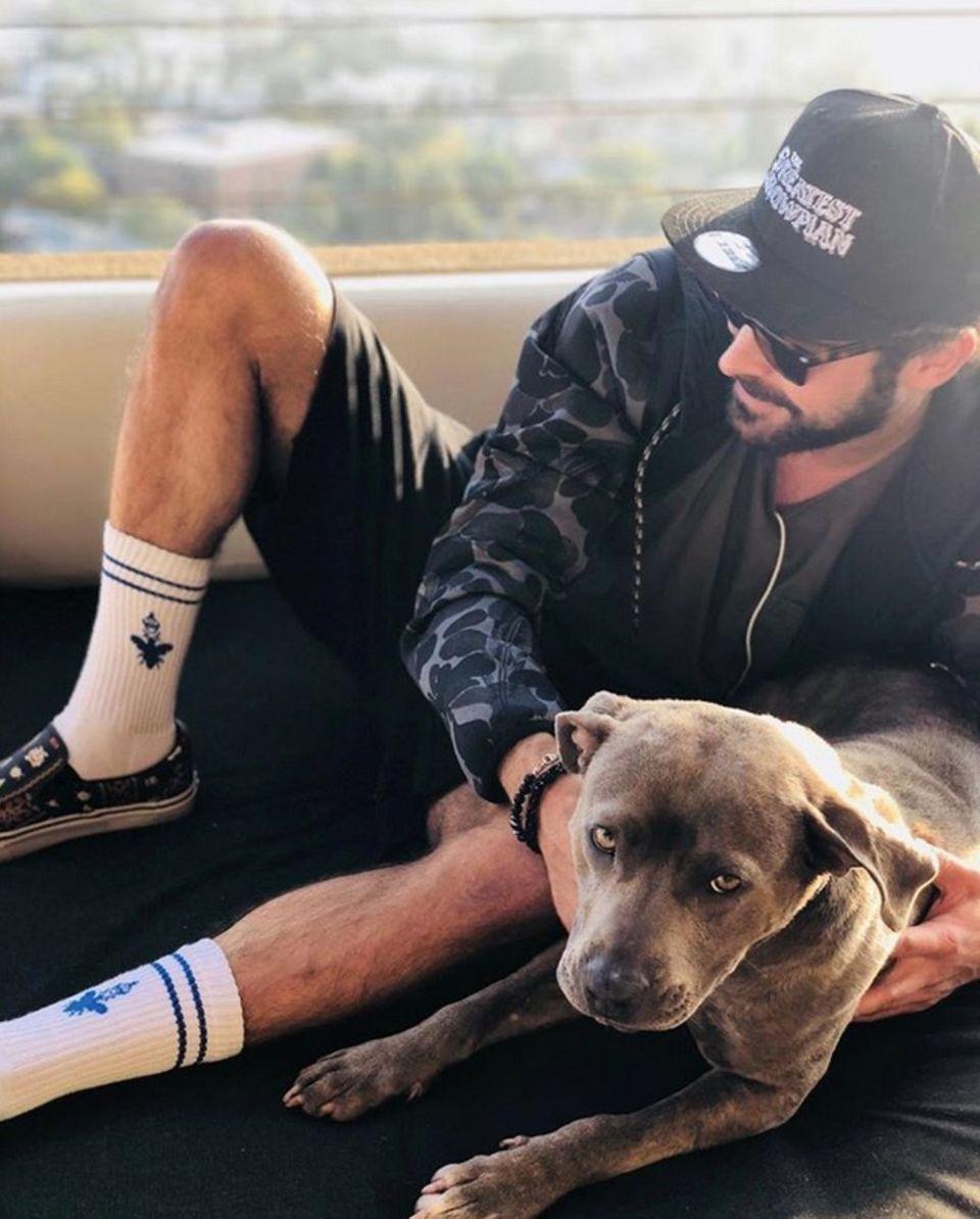 """Zac Efron präsentiert seinen Instagram-Fans seinen neuen Vierbeiner """"Maca"""""""