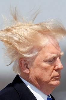 Als Donald Trump von einem Windstoß erfasst wird, reißt es ihm fast die Haare vom Kopf. Doch ganz entgegen der Gerüchte, er würde ein Toupet tragen, bleibt alles an Ort und Stelle. Schon immer hatte der Präsident darauf bestanden, sein Haar wäre echt. So ganz will man ihm das dennoch nicht glauben.