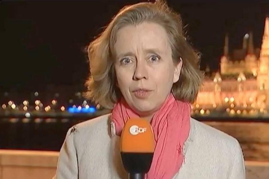 Britta Hilpert Eine Zdf Reporterin Und Der Spinnenschreck