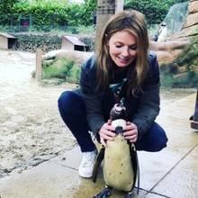 """""""Spice Girl"""" Geri Halliwell besucht ein Pinguinpärchen im Zoo. Was so besonders daran ist? Das Pärchen ist homosexuell und hat sogar Adoptiveier zur Brut bekommen."""