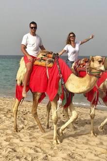 14. April 2018  Selbst auf einem Kamel macht Gisele Bündchen eine gute Figur. Das Topmodel und ihr Ehemann Tom Brady verbringen gerade ein paar schöne Tage in Qatar.