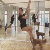 Seit Neuestem probiert sich Rebecca Mir auch beim Pole Dance aus. Der Tanz an der Stange gilt mittlerweile als knallhartes Workout, Pole ist Muskeltraining par excellence. Da man sich die ganze Zeit festhalten muss, werden die Arme sehr angestrengt.