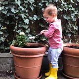 19. April 2018  Der kleine Theodore Trump hilft Mama Ivanka fleißig beim Gärtnern.