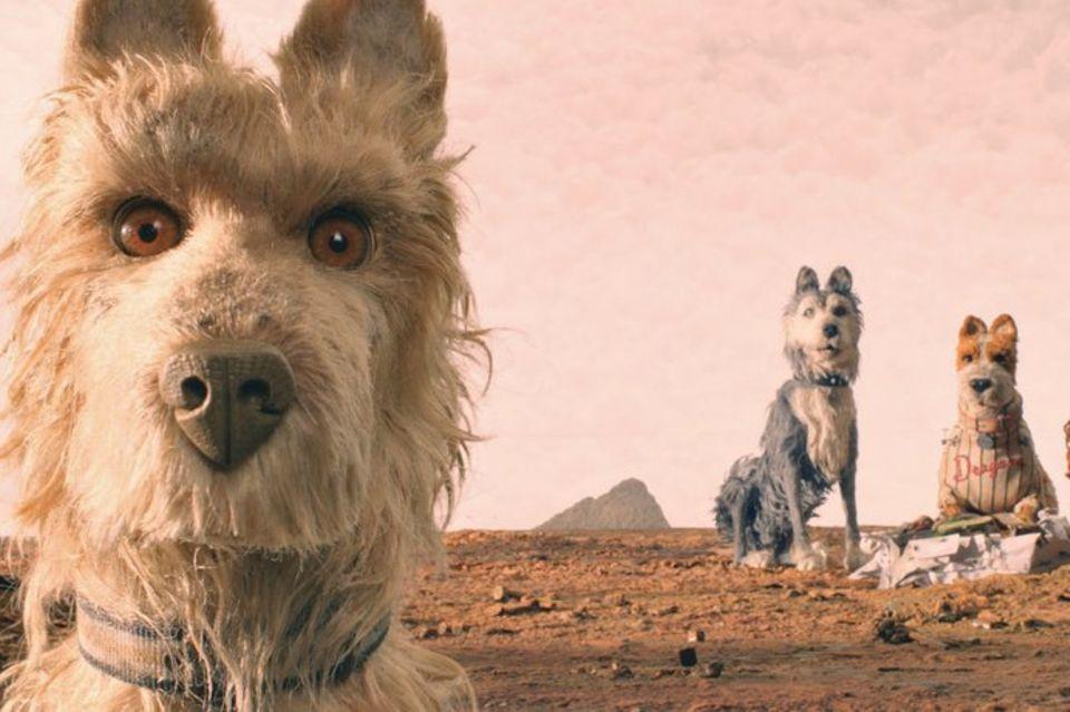 """Szene aus """"Isle of Dogs - Ataris Reise"""""""