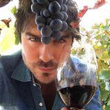 Was kann dieser Mann eigentlich nicht? Ian Somerhalder ist Model, Schauspieler und jetzt auch noch Winzer. Stolz präsentiert er auf seinem Instagram-Account seinen eigenen Wein.