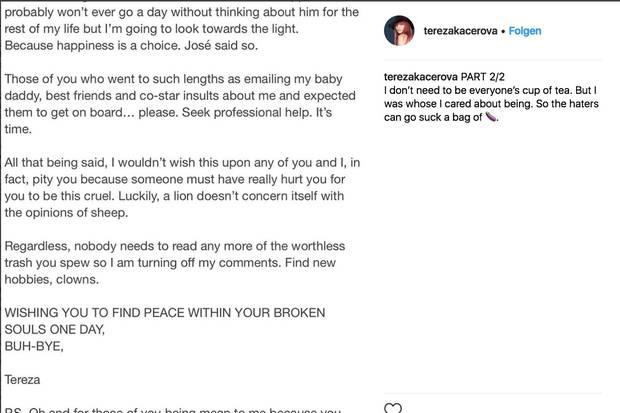 Avicii New statement from his girlfriend Tereza Kaerov