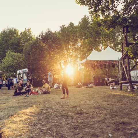 "Immergut Festival: Die alternative ""Fusion"" an der Seenplatte"