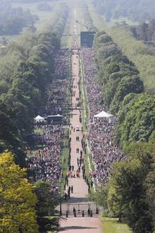 """Auf dem sogenannten """"Long Walk"""" der langen Zufahrtsstraße zu Schloss Windsor, haben sich Tausende Fans versammelt um einen Blick auf das Brautpaar zu erhaschen."""