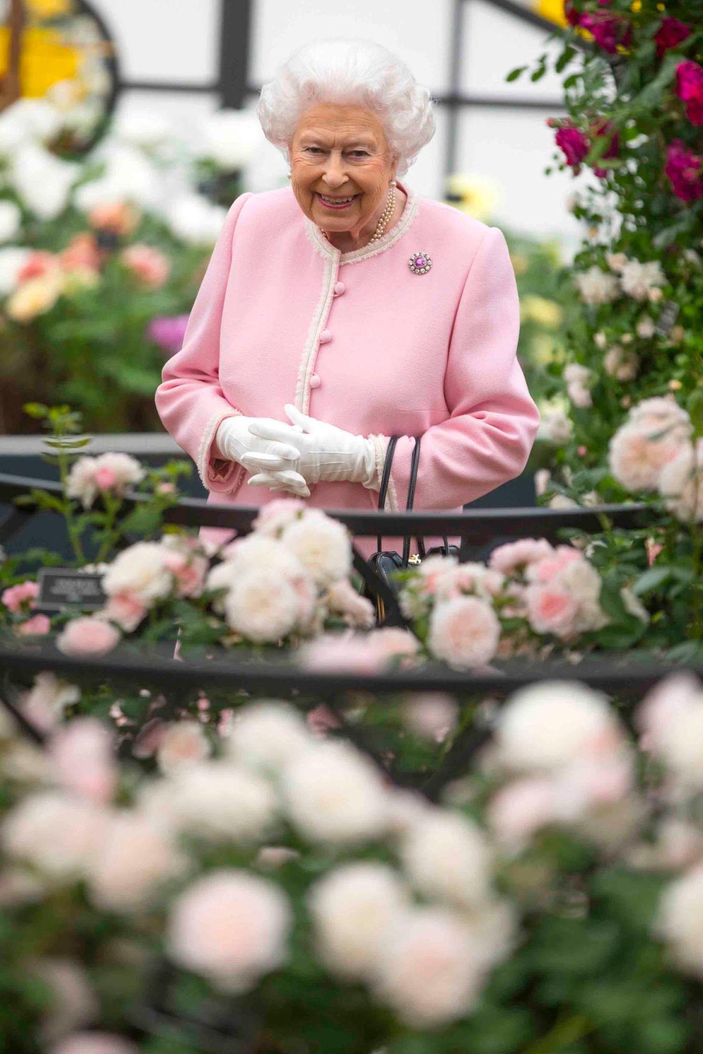 22. Mai 2018  Als wenn sich die Gärtner mit Queen Elizabeths Stylist abgestimmt haben, erscheint die Monarchin in einer zu den Rosenblüten passenden Farbe zur alljährlichen Chelsea Flower Schau. Wie immer hat sie ihre Familie im Schlepptau, die sich - wie jedes Jahr - die Ausstellung nicht entgehen lassen.