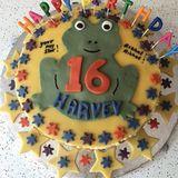 Diese coole Frosch-Torte schenkt Katie Price ihrem Sohn Harveyzum 16. Geburtstag. Das leckere Backwerk ist zusätzlich mit bunten Sternen versehen.