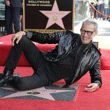 """14. Juni 2018  Filmstar Jeff Goldblum hat jetzt seinen eigenen Stern auf dem berühmten Walk of Fame in Hollywood. Es ist der 2638. Stern auf der Gedenkmeile .""""Das war schon immer meine Glückszahl!"""", scherztder """"Jurassic-Park""""- Star bei der Enthüllungszeremonie."""