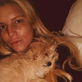 Herrlich normal! Jessica Simpson postet ein Selfie mit ihrem Hund und ist dabei komplett ungeschminkt. Über 52.000 Likes bekam die Sängerin dafür auf Instagram. Cool!