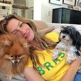 Supermodel Gisele Bündchen feuert die brasilianische Nationalmannschaft mit ihren Hündchen vom Sofa aus an.