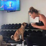 Supermodel Nina Agdal und ihr HundDaisybei ihrer morgendlichen Routine: Über die FIFA reden und Wetten abschließen.